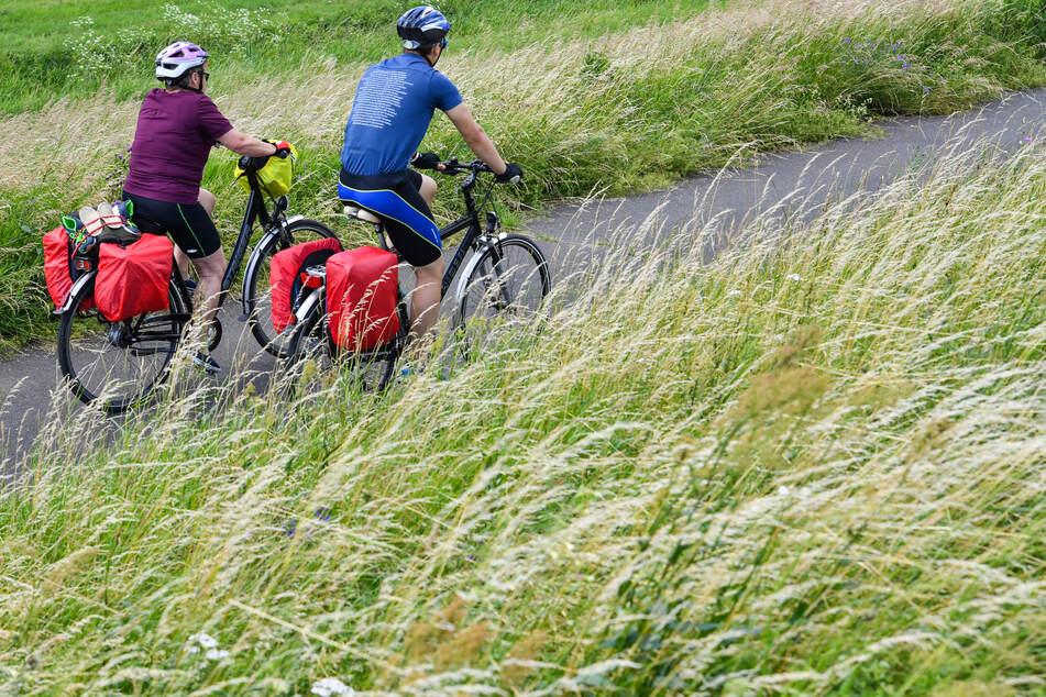 Radwandertouristen fahren mit ihren bepackten Fahrrädern auf dem Oder-Neiße-Radweg, der sich im Oderbruch auf dem Deich am deutsch-polnischen Grenzfluss Oder befindet.