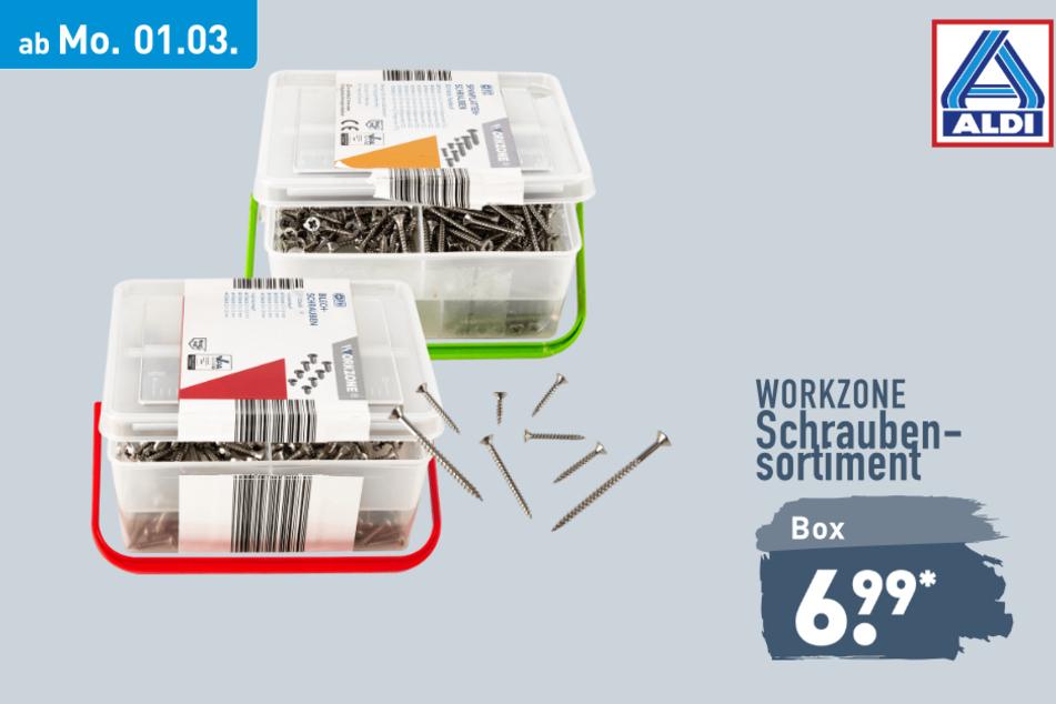Schraubensortiment von Workzone ab Montag für 6,99 Euro bei ALDI in Genthin