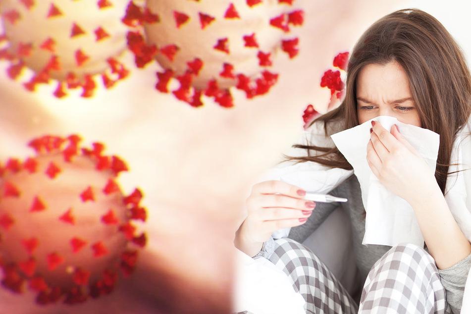 Coronavirus: Können geheilte Patienten erneut daran erkranken?