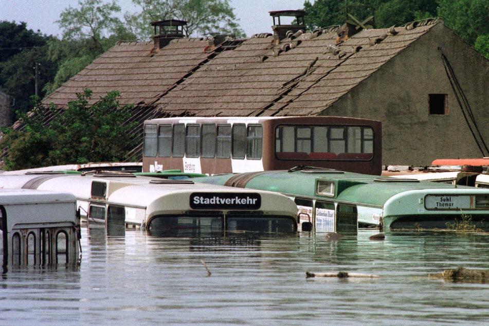 Solche Bilder sollen sich nicht wiederholen: Fast bis zum Dach stehen diese Busse am 27. Juli 1997 in der vom Oderhochwasser überfluteten Thälmann-Siedlung nahe dem brandenburgischen Eisenhüttenstadt. (Archivfoto)