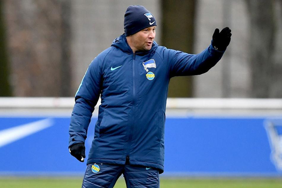 Bei Hertha BSC übernimmt ab sofort Ex-Trainer Pal Dardai (44) wieder das Ruder.