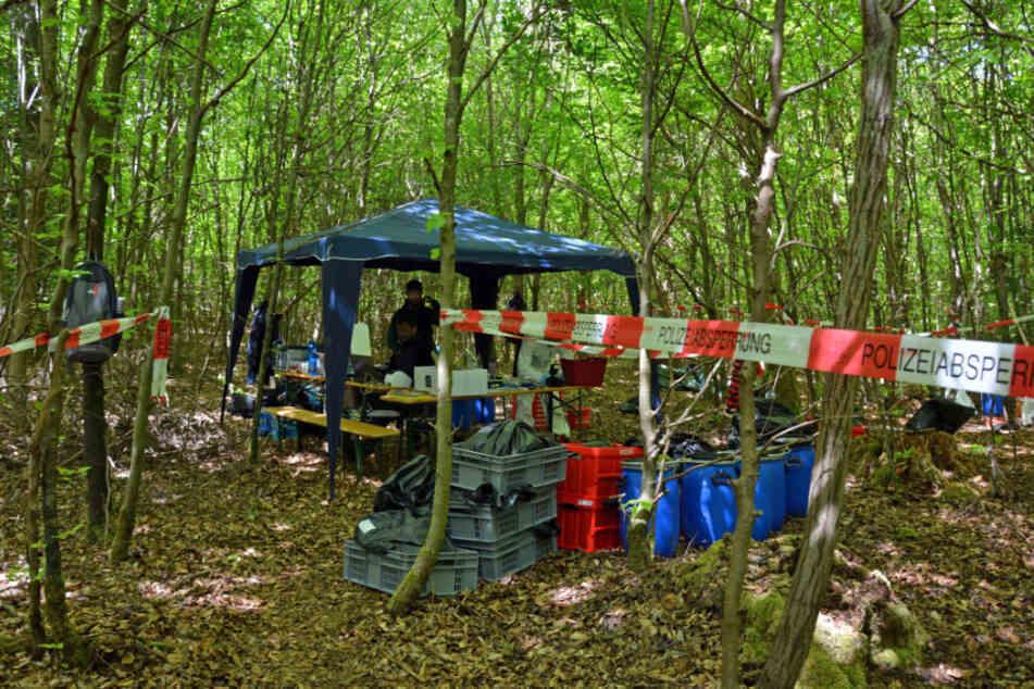 Nach 18 Jahren wurden die beiden Leichen in einem Wald bei Kipfenberg gefunden. (Archiv)