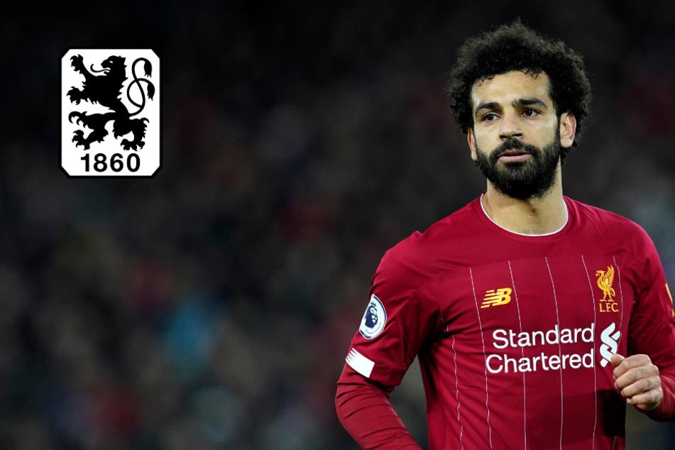 Kult-Kommentator begeistert das Netz:Mo Salah zum TSV 1860 München?