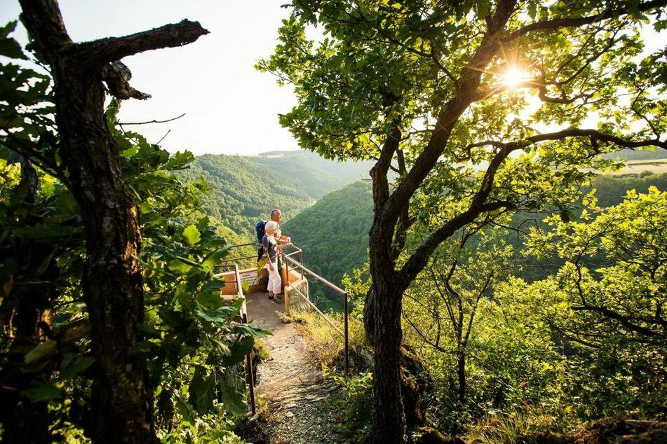 Postkartenmotive entdeckt man auf der Aussichtskanzel Falkenstein des Soonwaldsteigs.