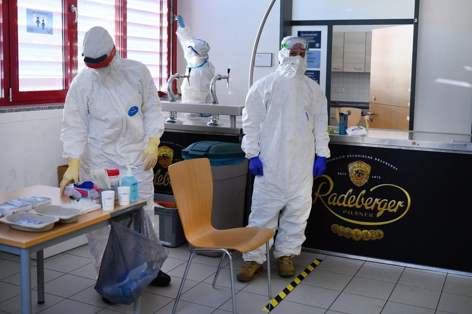 Massentests in Radeberg: Auf der Jagd nach Mutationen