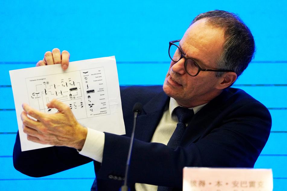 Peter Ben Embarek, Chef des Teams WHO, hält auf eine Grafik, die die Übertragungswege des Coronavirus zeigt.