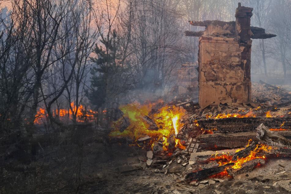 Gefährlicher Löscheinsatz in den verstrahlten Wäldern von Tschernobyl