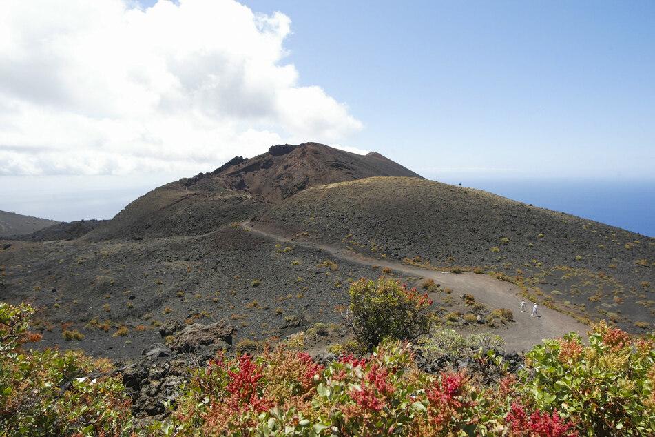 Einer der Vulkane von Cumbre Vieja, einem Gebiet im Süden der Insel La Palma, das von einem möglichen Vulkanausbruch betroffen sein könnte.
