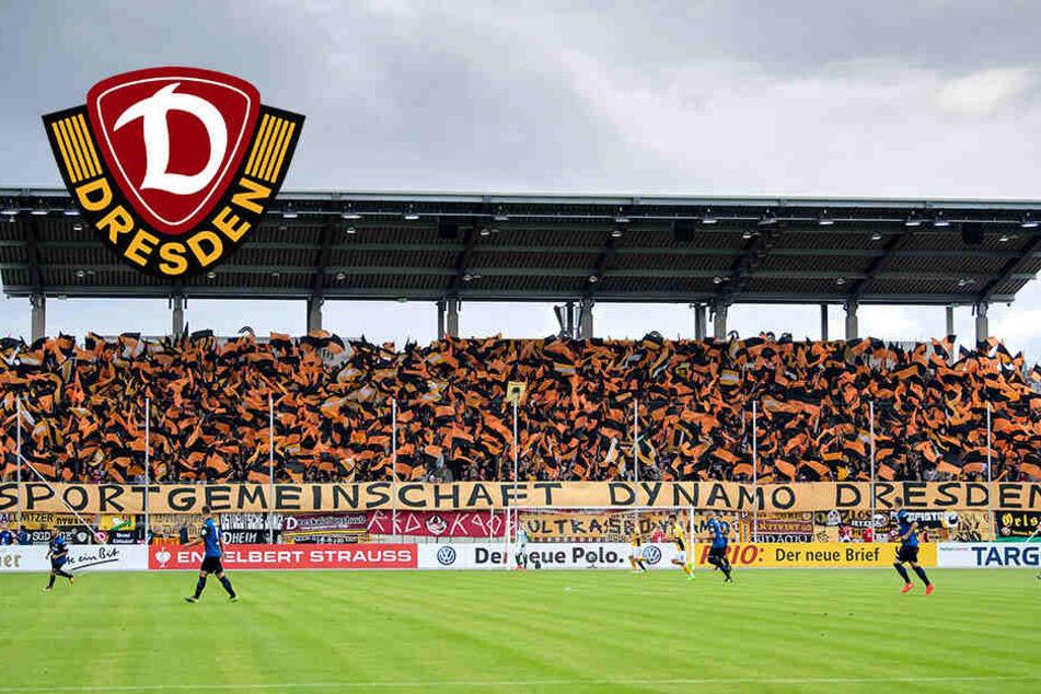 Dynamos DFB-Pokal-Gegner Dassendorf sucht Stadion! Spielt die SGD wieder in Zwickau?