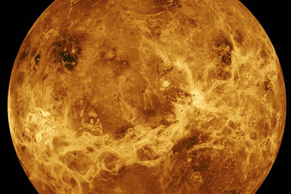 Gibt es Leben auf der Venus? Forscher wollen spezielle Mission starten
