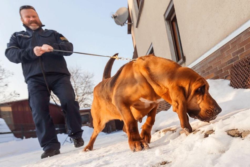 """Hundeführer Jörg Kempe (52) half mit """"Hippie"""" bei der Suche nach der vermissten Schülerin."""