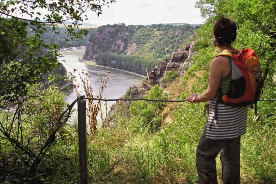 Horror-Wanderung auf dem Rheinsteig: Jogger begrapscht Frau auf einsamen Weg