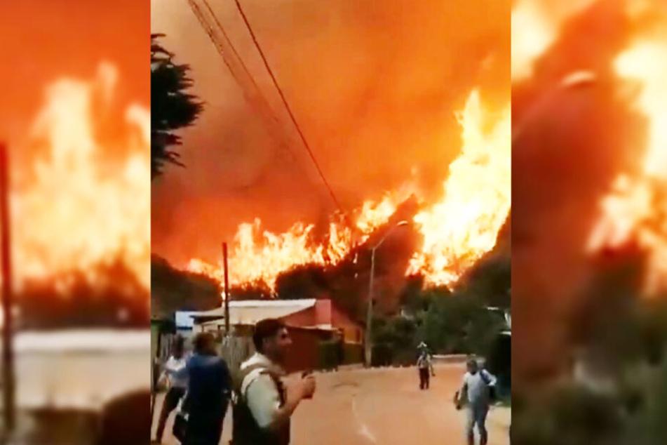 Die Brände erstreckten sich über 140 Hektar.