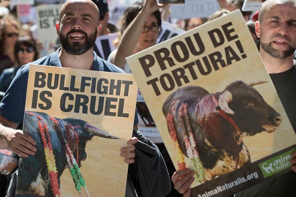 Stierkampf ist Gewalt! Tausende protestieren in Spanien