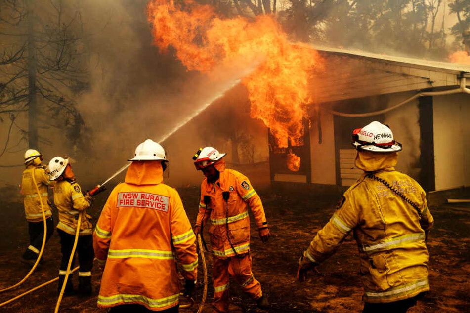 Feuerwehrmänner kämpfen gegen einen Brand in der Nähe von Bundanoon in New South Wales.
