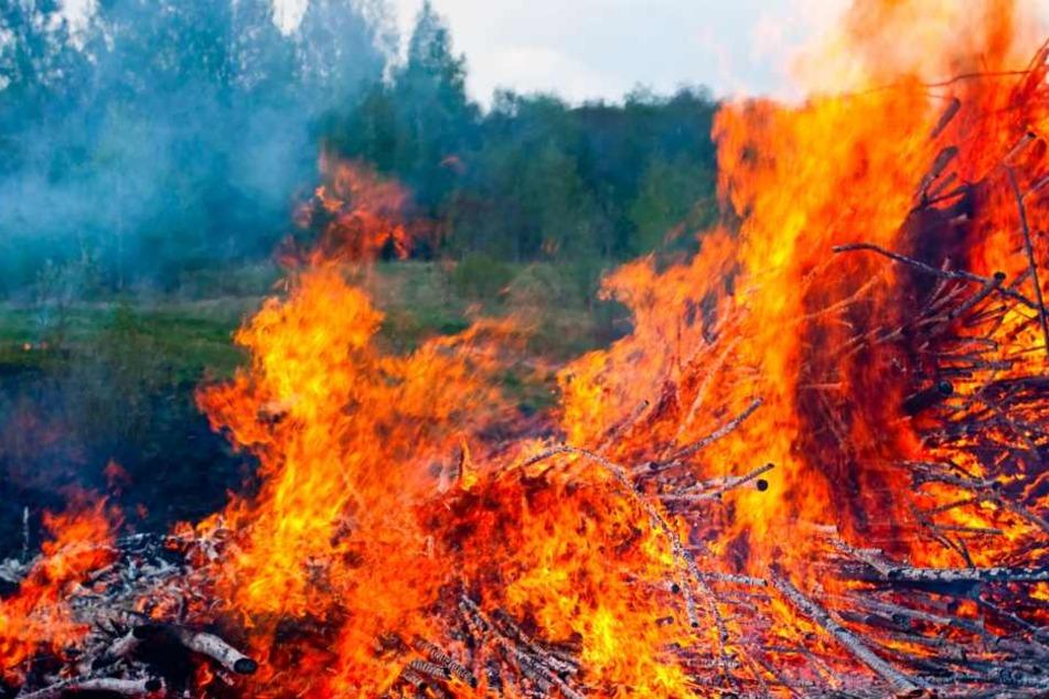 Hitze sorgt für mehrere Waldbrände