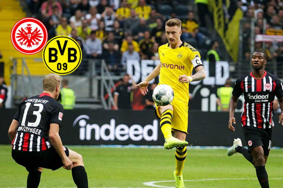 BVB vergibt Führung in rasantem Bundesliga-Spiel! Eintracht mit großer Moral