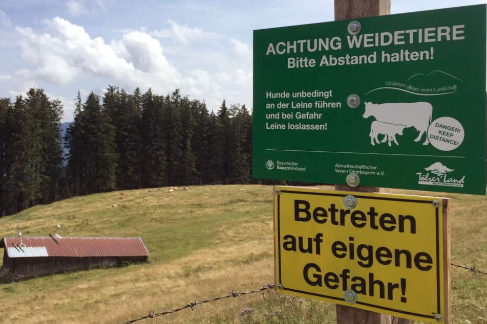 Ein Schild auf dem Blomberg warnt vor dem Betreten einer Kuhweide.