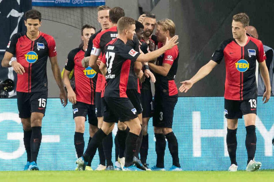 Die Mitspieler gratulieren Ibisevic zum zwischenzeitlichen 2:0 in Köln.