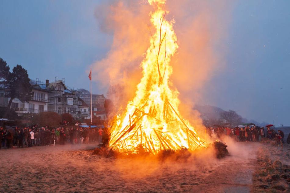 In aufgeschütteten Holzhaufen können sich Tiere verstecken. Sie verbrennen beim Osterfeuer.