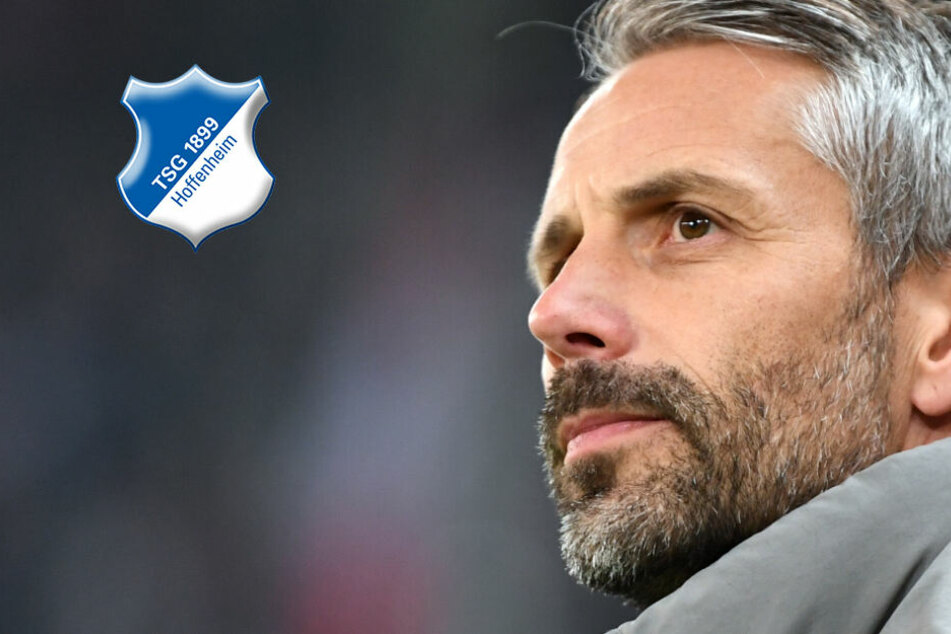 Salzburg-Trainer Marco Rose zur TSG? Das sagt Red-Bull-Chef Mateschitz