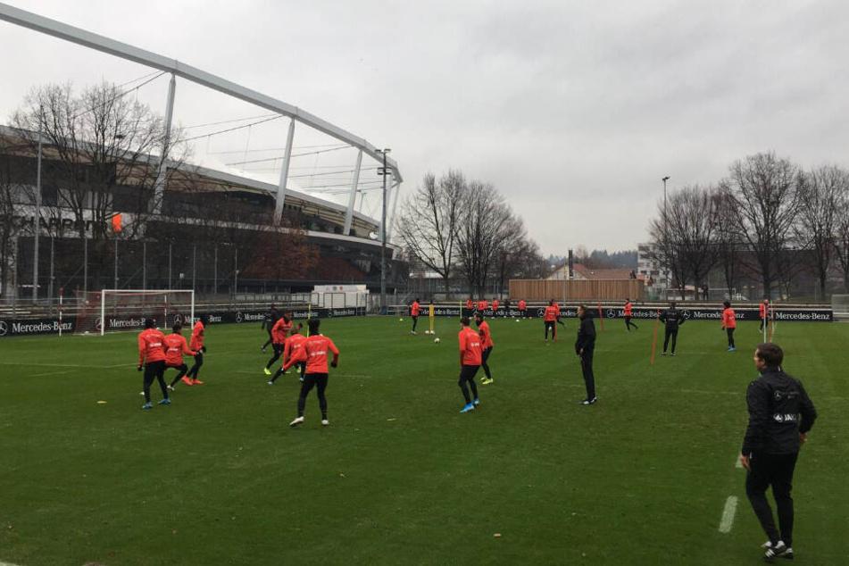 Ein Blick auf die VfB-Kicker im ersten Training unter ihrem neuen Coach Pellegrino Matarazzo.
