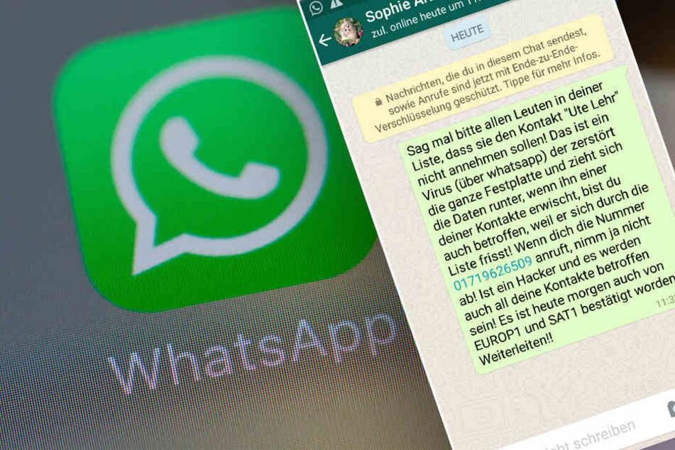 """WhatsApp-Virus? Kettenbrief """"Ute Lehr"""" sorgt für Verunsicherung"""