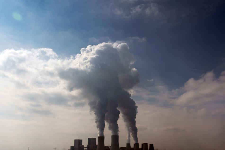 Sachsen, Boxberg: Weißer Dampf steigt aus den Kühltürmen des Braunkohlekraftwerk auf. (Archivbild)
