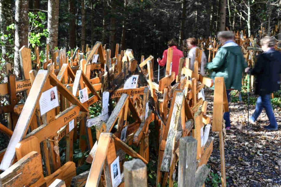 Hunderte Kreuze sind dort mittlerweile zu sehen.