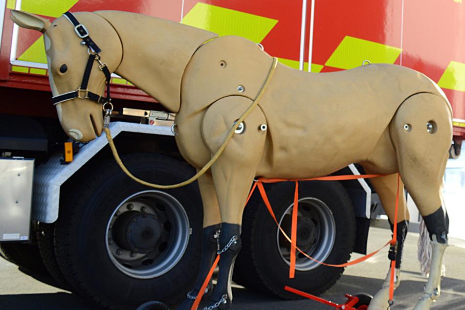 Ein Pferd aus Plastik steht auf Rollen vor einem Fahrzeug der Tierrettung des Kreisfeuerwehr-Verbandes Kelkheim.