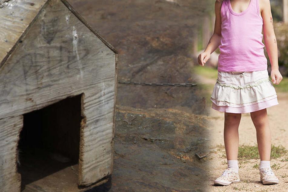 Als ein Mädchen in die Hundehütte des Bernhardiner-Labrador-Mischlings schaute, biss dieser unvermittelt zu.