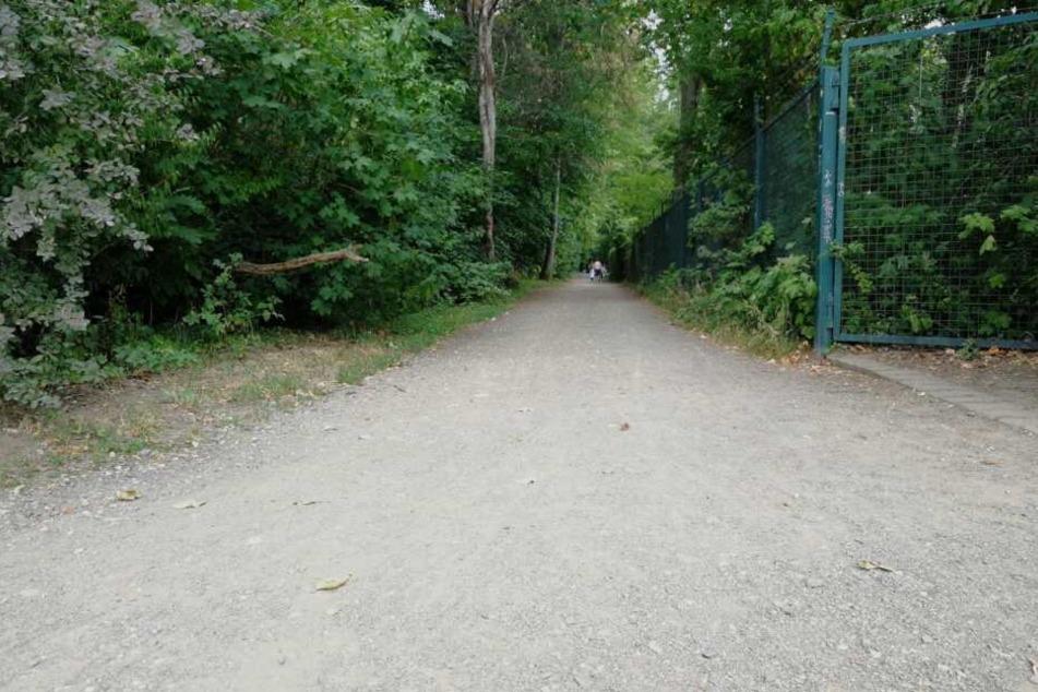 Anschließend bog sie in diesen Weg ein, lief weiter bis zum Gohliser Schlösschen. Unweit dessen begegnete sie ihrem Vergewaltiger.