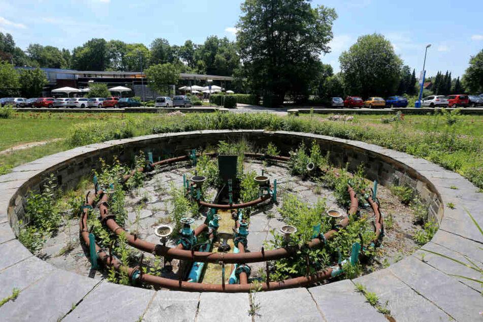 Der Brunnen an der Pelzmühle rottet vor sich hin. Vor 17 Jahren drehte das Rathaus das Wasser ab. Die Sanierung würde 160 000 Euro kosten.