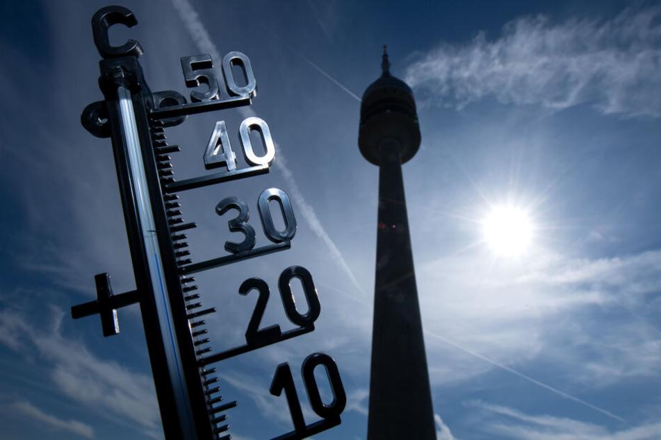 Die Temperaturen klettern teilweise in den zweistelligen Bereich. (Symbolbild)