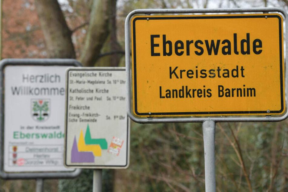 Ein vernachlässigtes fünfjähriges Mädchen ist in Eberswalde in Brandenburg in die Obhut der Behörden gekommen. (Symbolbild)