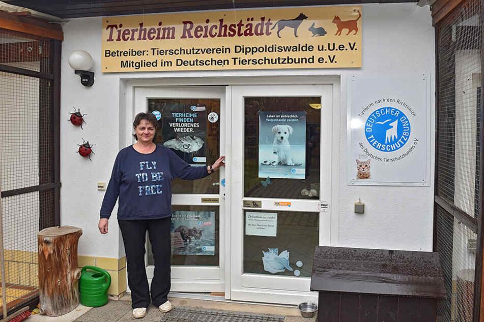 Katrin Thiele ist die Leiterin des Tierheims Dippoldiswalde in Reichstädt.