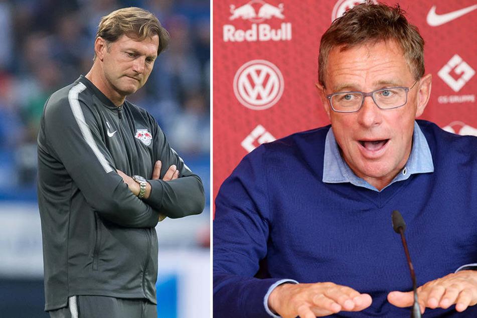 Ratlos steht RB-Trainer Ralph Hasenhüttl (l.) an der Seitenlinie. Sportdirektor Ralf Rangnick (r.) hatte derweil viel zu meckern.
