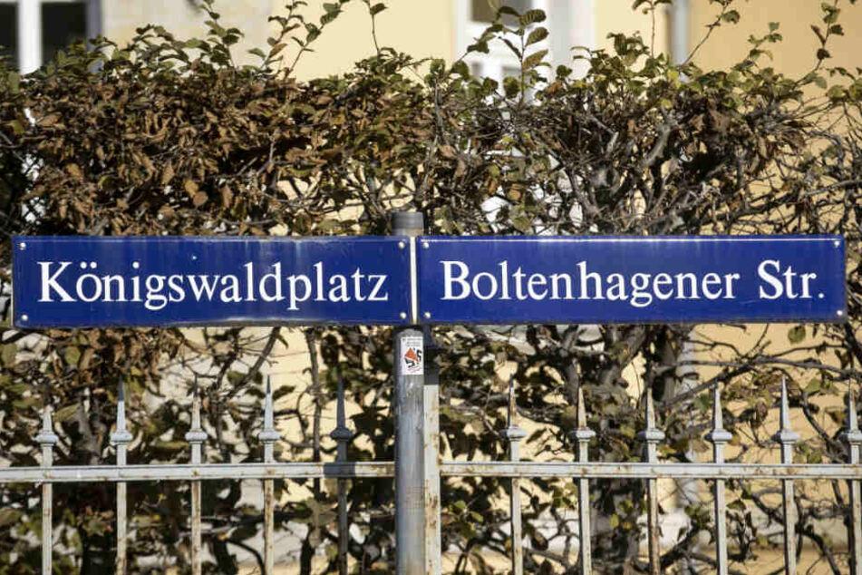 Dresdens jüngster Zebrastreifen wurde am Königswaldplatz in Klotzsche eingeweiht.