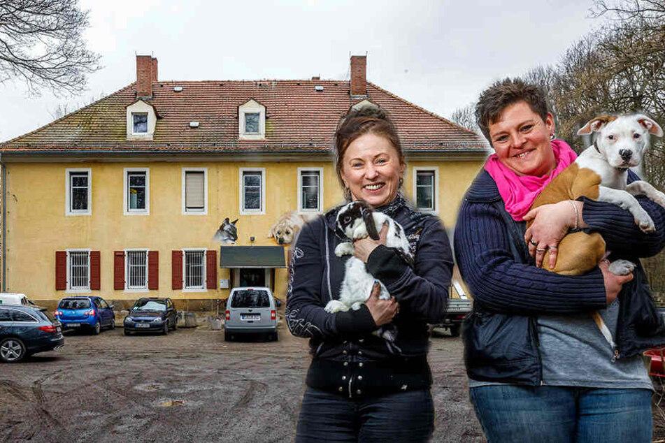 Das Tierheim in Freital. Chefin Anja Witzmann (r., 34) hatte den Welpen Cooper (3 Monate), der im Tierheim geboren wurde, eigentlich schon vermittelt. Jetzt ist er zurück.Das Tierheim in Freital.