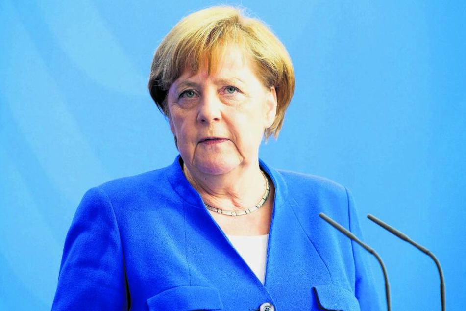 Kanzlerin Angela Merkel (64, CDU) will zwischen Umwelt- und Landwirtschaftsministerium vermitteln. Beide Ressorts sind für den Wolf-Abschuss zuständig.