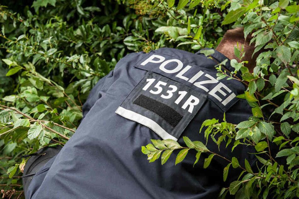 Beim Absuchen der Parkanlage fanden die Beamten die Frau schlafend im Gebüsch. (Symbolbild)