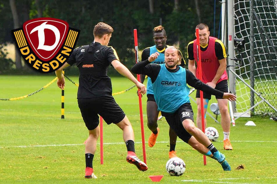 Dynamos neuem Co-Trainer entgeht nichts mehr!