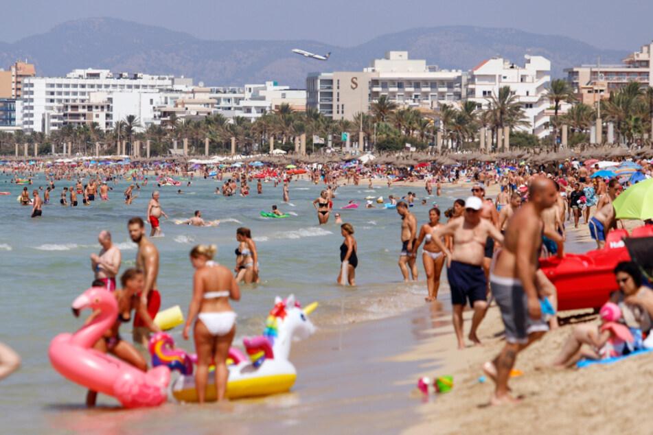 Tui macht Hoffnung: Malle-Urlaub für die Deutschen offenbar nicht in Gefahr