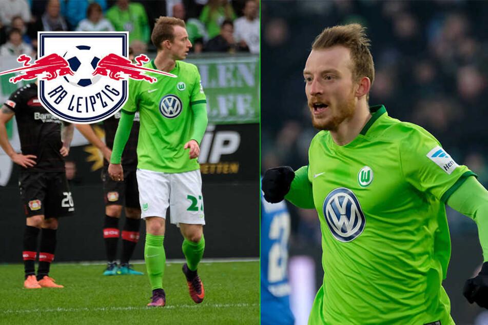 Kommt Ex-Dynamo Maximilian Arnold zu RB?