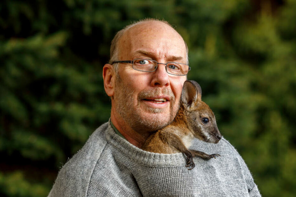 Heiko Drechsler und seine Gertrud: Am Anfang wog sie knapp 400 Gramm, mittlerweile bringt das Känguru gut zwei Kilo auf die Waage.