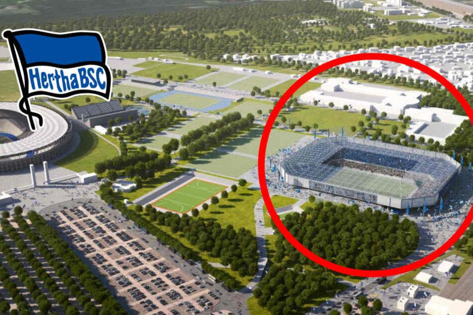 """Wird es doch kein neues """"Hertha-Stadion"""" geben?"""