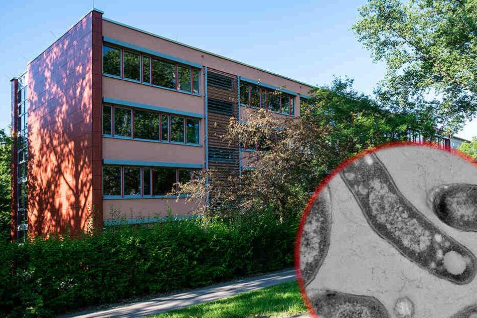 Tuberkulose-Alarm an Chemnitzer Grundschule