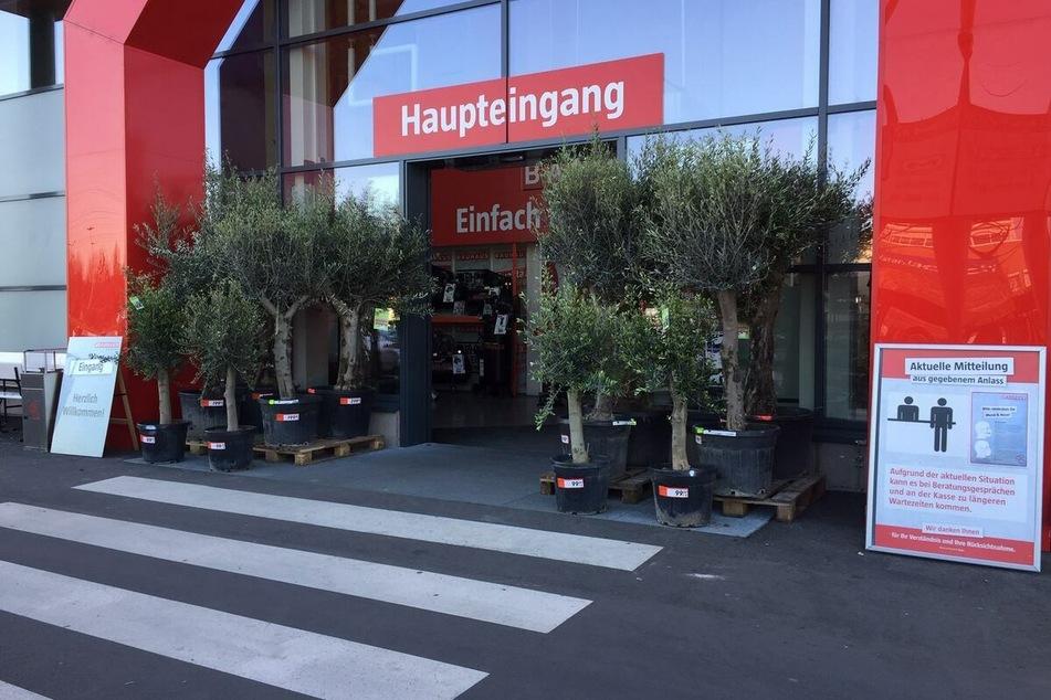 BAUHAUS Dresden öffnet ab Mittwoch (19.5.) wieder ohne Termin und Test