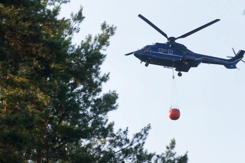 Im bayerischen Nationalpark kommt ein Hubschrauber zum Einsatz. (Symbolbild)
