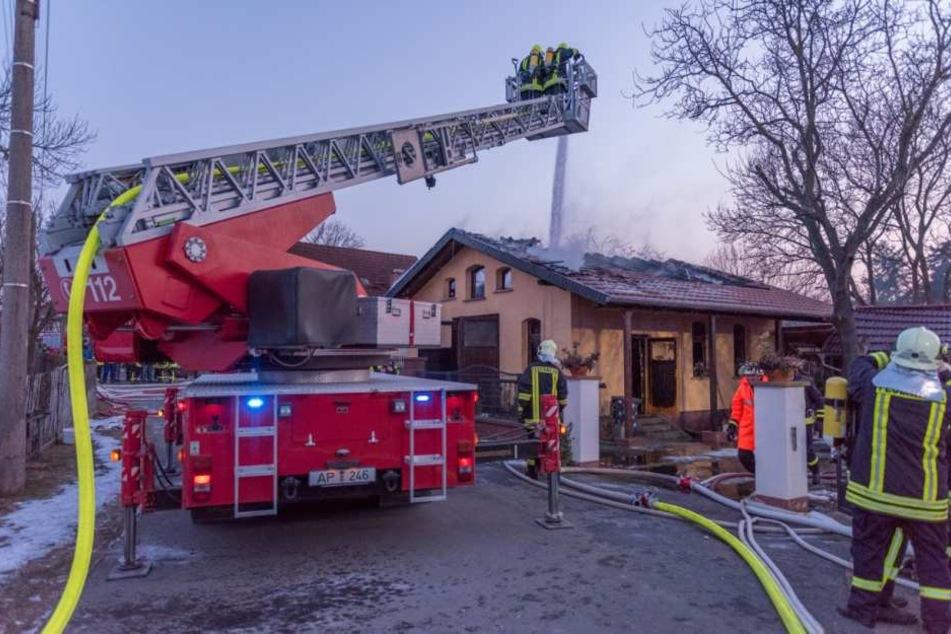 Jetzt sind die Pflanzen dahin. Der Brand verursachte einen Schaden von 15.000 Euro.